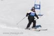 Ski 1733