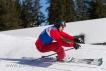 Ski 1761